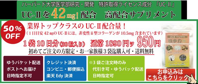 非変性2型コラーゲンの「独歩力」10日分950円お試しお試しセット